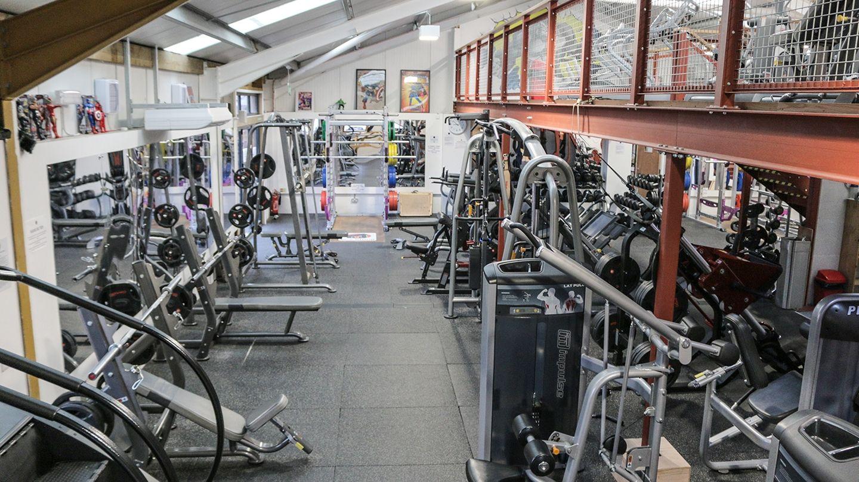 Silverback Gym Tain 3