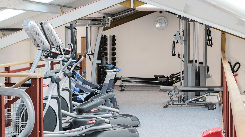 Silverback Gym Tain 4